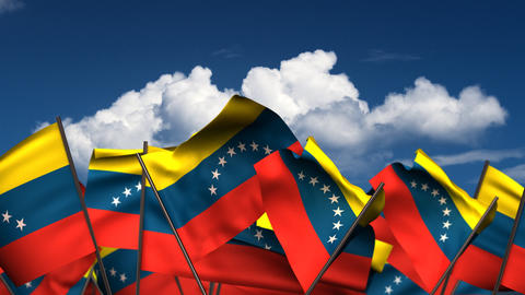 Waving Venezuelan Flags Animation
