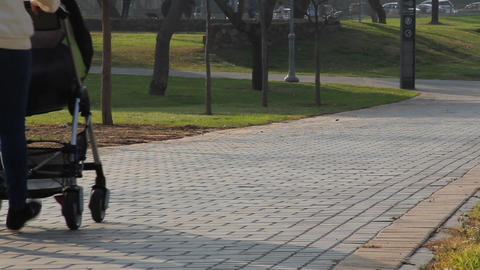 Mother with stroller walks in the park Stock Video Footage