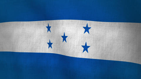 Honduras Waving Flag (Loop-able) Animation