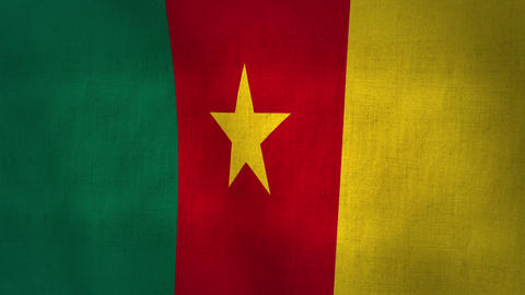 Cameroon Waving Flag (Loop-able) Animation
