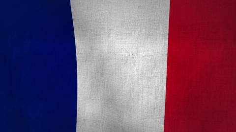 France Waving Flag (Loop-able) Animation