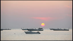 Fishing Boats in Sea at Dusk Footage