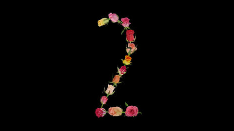 Montage opening rainbow roses number 2 shape alpha matte 2n Stock Video Footage