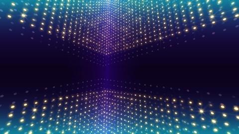 LED DenQ 2 0