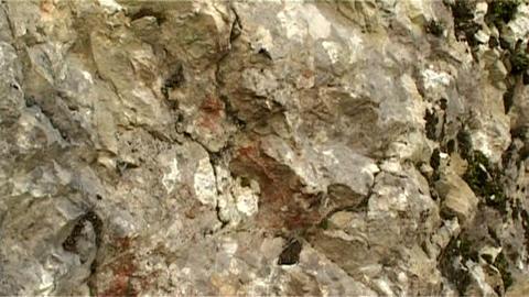 ntsc stone horizontal pan Live Action