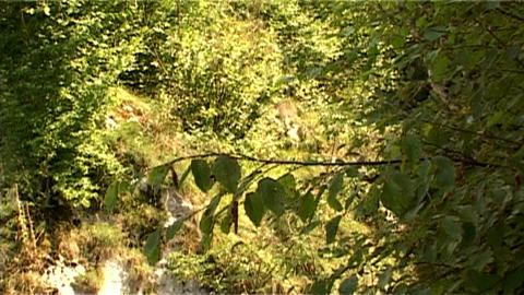 ntsc stone panoramic Stock Video Footage