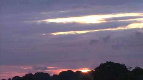 D35 Amazing Skyline SunsetTL Stock Video Footage