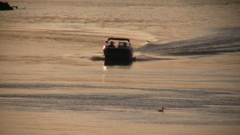 Motorboat speeds down river at sunset Footage