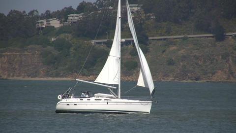 Sailboat sails across the sunny San Francisco Bay Stock Video Footage