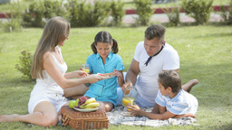 Family Snack In Picnic stock footage