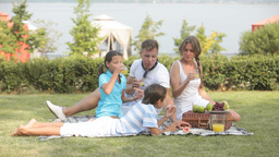 Relaxed family in picnic Footage