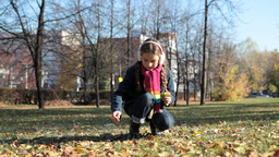 Girl picking autumn leaves Footage