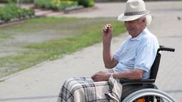 Senior Man in Wheelchair Feeding Crumbs to Sparrows Footage