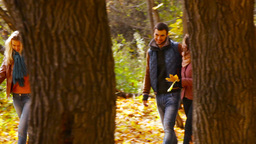 Two couples of smiling friends walking through the autumn forest Footage