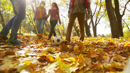 Football On Leaves stock footage