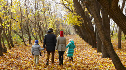 Happy family walking along the park lane on an autumn day Footage