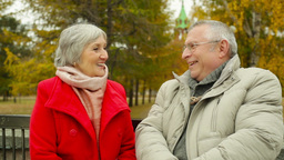 Tilt of a candid elderly couple sitting on the park bench and talking Footage