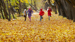 Active kids trying to outrun each other in the autumn forest Footage