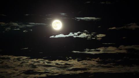 藍月 Bluce Moon Animation