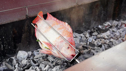 Fresh Fish Barbecue stock footage