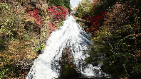 yudaki falls ライブ動画