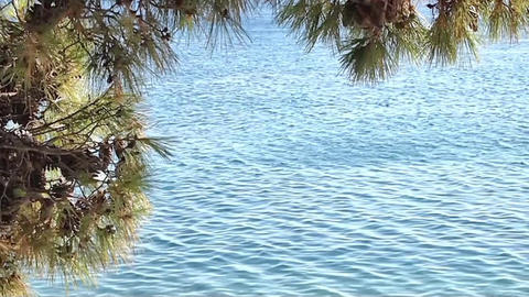 Blue Adriatic Sea stock footage