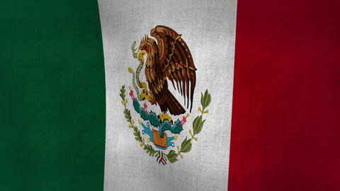 Mexico Flag Background Textured (Loop-able) Animation
