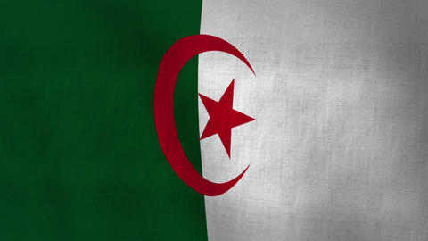 Algeria Flag Background Textured (Loop-able) Animation