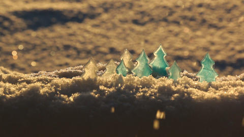 Ice Trees In The Sunlight stock footage