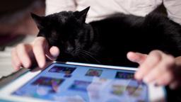 Browsing on touchpad ライブ動画