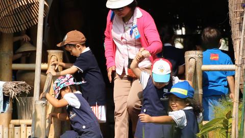 Field Trip Of Kindergarten 1