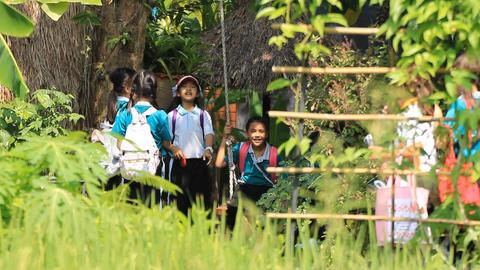 Field Trip Of Kindergarten 2