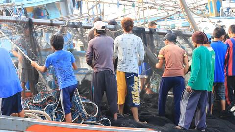 Phuket Fish Dock