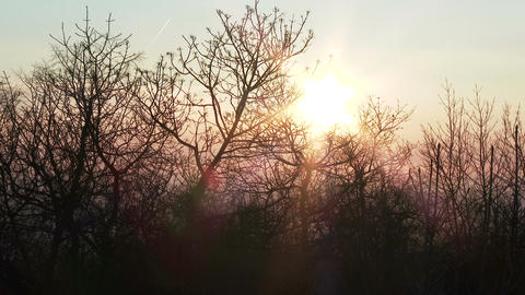 Winter Sunrise In Nature 1 stock footage