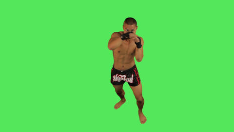 Thai boxer fighting Live Action