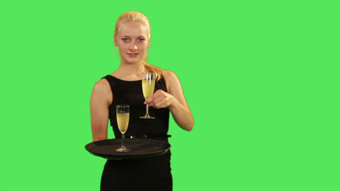 Female waitress, serving drink Footage