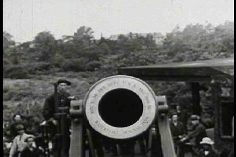 A cannon looks into the camera Footage