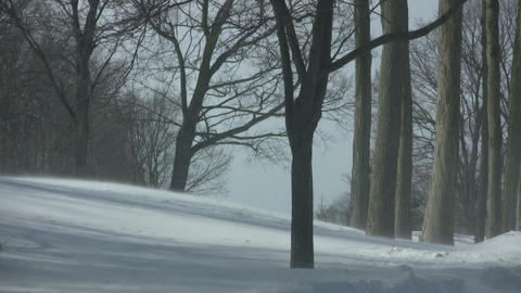 Scenic of snow blowing through a sunny park (High... Stock Video Footage