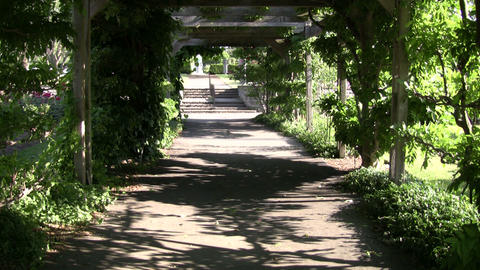 Walking trail cuts through the treeline (High Definition) Stock Video Footage