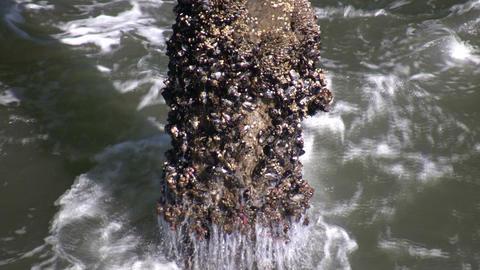 Ocean waves splash against the pier's support columns... Stock Video Footage