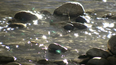 Sunlight illuminates the bottom of shallow stream (High... Stock Video Footage