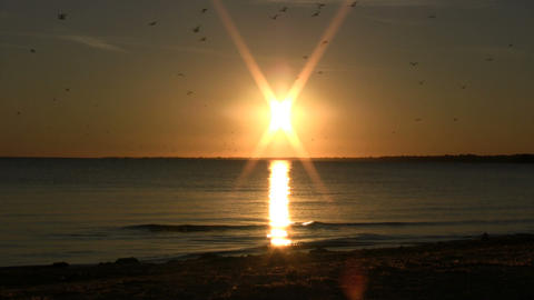 Beautiful scenic of setting sun reflecting on water (High... Stock Video Footage