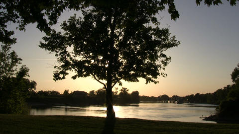 Tree silhouettes as the sunset reflects on the water Footage