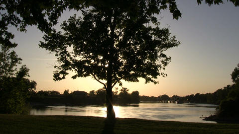 Tree silhouettes as the sunset reflects on the water Stock Video Footage