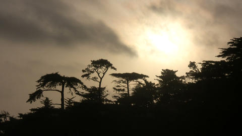 Trees are silhouetted in the distance as the sun sets Stock Video Footage
