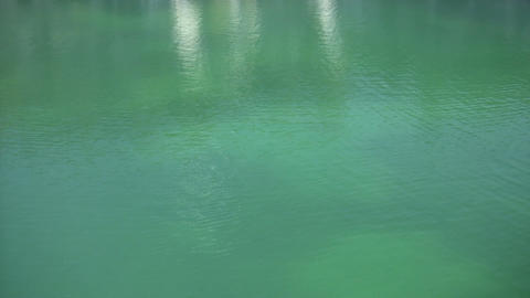 Relaxing scenic of a beautful and calm pond (High... Stock Video Footage