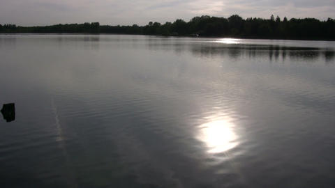 Relaxing scenic of a beautful and calm pond (High Definition) Footage