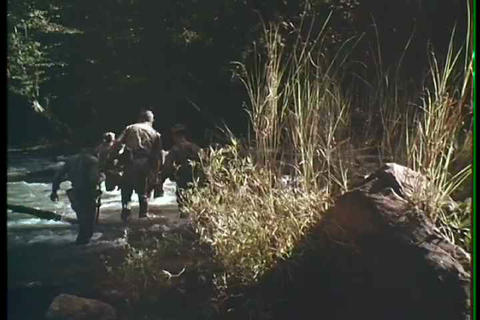 South Vietnamese Army patrols in the jungles and r Live Action