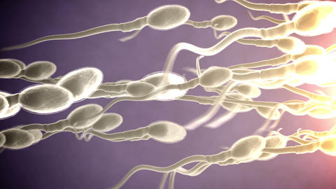 Sperm Attack stock footage