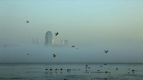 Foggy Istanbul Footage
